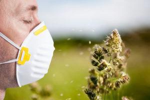 allergia-al-polline